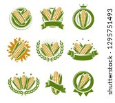 corn label and element set.... | Shutterstock .eps vector #1295751493