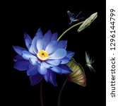 Stock photo luxury purple lotus close up isolated on black background two dragonflies flying over a lotus 1296144799