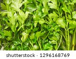 fresh parsley close up in water.... | Shutterstock . vector #1296168769