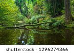 Small photo of Beautiful old park in Terra Nostra botanical garden on Sao Miguel Island, Azores, Portugal