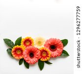 happy mother's day  women's day ... | Shutterstock . vector #1296277759