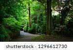 a quiet cobbled street with...   Shutterstock . vector #1296612730