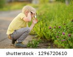 charming kid exploring nature... | Shutterstock . vector #1296720610