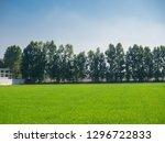 rice field green grass blue sky.... | Shutterstock . vector #1296722833