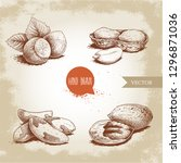 hand drawn sketch style nuts... | Shutterstock .eps vector #1296871036