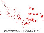 Stock photo red rose petals fly into the distance isolated white background 1296891193