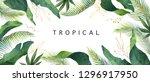 watercolor banner tropical... | Shutterstock . vector #1296917950