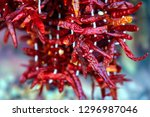 hot chili peppers dried pods a... | Shutterstock . vector #1296987046