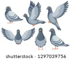 Colorful Icon Set Of Pigeon...