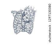 wild flower vintage rib cage...   Shutterstock .eps vector #1297130380