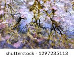mirroring on the water surface | Shutterstock . vector #1297235113