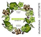 hand drawnsacha inchi branch... | Shutterstock .eps vector #1297273870