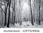 winter forest landscape with... | Shutterstock . vector #1297529836