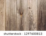 aged natural old obsolete... | Shutterstock . vector #1297600813