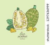 background with jackfruit ... | Shutterstock .eps vector #1297636999