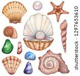 big set of watercolor shells on ... | Shutterstock . vector #1297653610