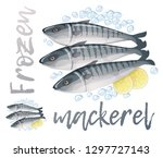 frozen mackerel fish... | Shutterstock .eps vector #1297727143