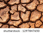 close up background of the... | Shutterstock . vector #1297847650