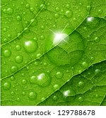 Vector Water Drops On Green...