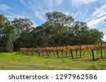 Williamstown  South Australia ...