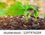 background growing  money ... | Shutterstock . vector #1297976209