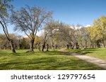 ash tree grove in soto del real ... | Shutterstock . vector #129797654