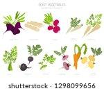 root vegetables raphanus ... | Shutterstock .eps vector #1298099656