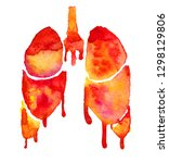 hand painted human lungs... | Shutterstock . vector #1298129806