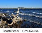 Scenic Yellowstone Lake