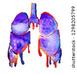 hand painted human lungs... | Shutterstock . vector #1298205799