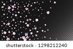 nice sakura blossom isolated... | Shutterstock .eps vector #1298212240