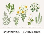 set with spring flowers. vector ... | Shutterstock .eps vector #1298215006