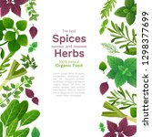 spices and herbs. basil mint... | Shutterstock .eps vector #1298377699