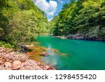 rapid waters of the mountain... | Shutterstock . vector #1298455420