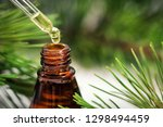 pine essential oil. liquid... | Shutterstock . vector #1298494459