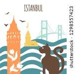 istanbul. modern vector... | Shutterstock .eps vector #1298557423