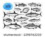 Fish Big Set. Ink Sketches...