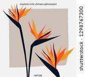 bird of paradise flower.... | Shutterstock .eps vector #1298767300