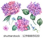 watercolor summer floral set of ... | Shutterstock . vector #1298885020