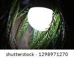 watcher in the night | Shutterstock . vector #1298971270
