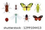 insects  collection  design | Shutterstock .eps vector #1299104413