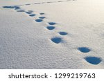 winter background with snow... | Shutterstock . vector #1299219763