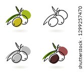 olive icon on a branch with... | Shutterstock .eps vector #1299257470