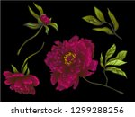 vector burgundy peony floral... | Shutterstock .eps vector #1299288256