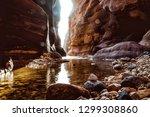 the mujib reserve of wadi mujib ...   Shutterstock . vector #1299308860