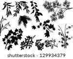 Illustration With Set Of Tree...