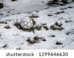 in a white winter  a ball... | Shutterstock . vector #1299646630