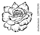 rose motif pattern on white
