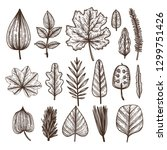 vector set of hand drawn leaves ... | Shutterstock .eps vector #1299751426