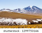 bolivian landscape  salvador...   Shutterstock . vector #1299753166